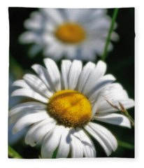Daisies Aglow Fleece Blanket