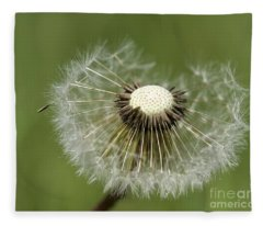 Dandelion Half Gone Fleece Blanket
