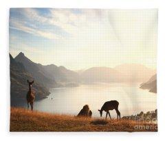 Deer At Sunset Fleece Blanket