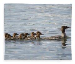 Duck And Ducklings Swimming In A Row Fleece Blanket