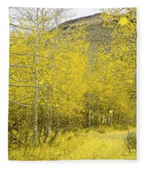 Falling Aspen Leaves Fleece Blanket