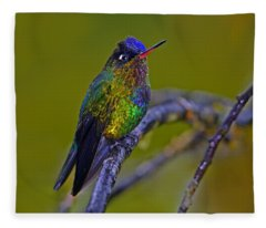 Fiery-throated Hummingbird Fleece Blanket