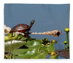 Florida Redbelly Turtle Fleece Blanket
