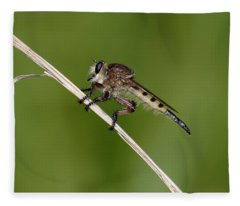 Giant Robber Fly - Promachus Hinei Fleece Blanket