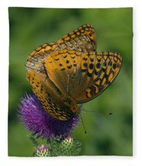 Great Spangled Fritillaries On Thistle Din108 Fleece Blanket