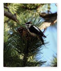 Hairy Woodpecker On Pine Cone Fleece Blanket