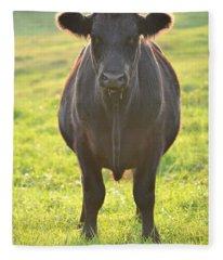 Here's The Beef Fleece Blanket
