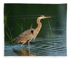 Heron Sunrise Fleece Blanket