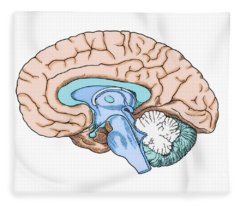 Illustration Of Human Brain Fleece Blanket