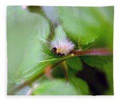 Leaf For One Fleece Blanket