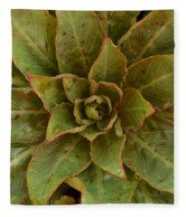 Leaf Star Fleece Blanket