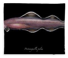 Living Fossil Eel - Protoanguilla Palau - By Maassen-pohlen Fleece Blanket