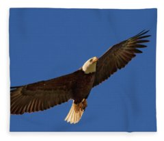 Majestic Bald Eagle Fleece Blanket