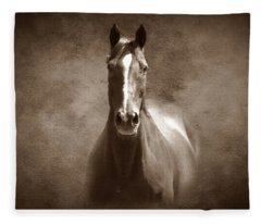 Misty In The Moonlight S Fleece Blanket