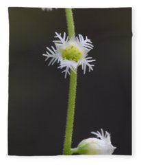 Miterwort Flowers Fleece Blanket