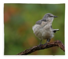 Mocking Bird Perched In The Wind Fleece Blanket