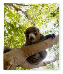 Mongoose Lemur Fleece Blanket