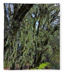 Moss Covered Trees Fleece Blanket