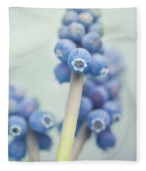 Muscari Fleece Blanket