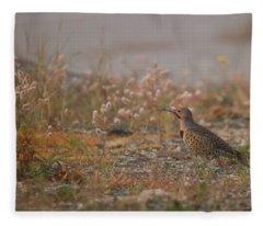 Northern Flicker Fleece Blankets