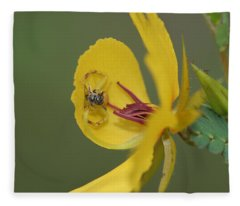 Partridge Pea And Matching Crab Spider With Prey Fleece Blanket