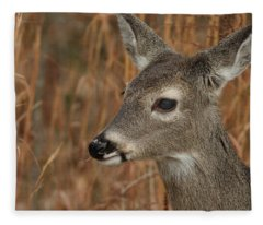 Portrait Of  Browsing Deer Fleece Blanket