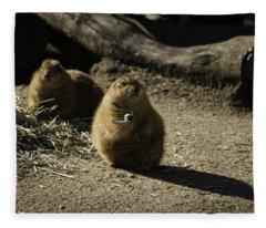 Prairie Dog Sees The Shadow Fleece Blanket