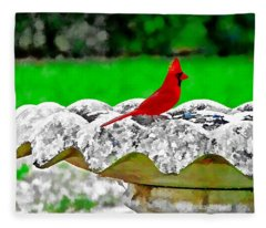 Red Bird In Bath Fleece Blanket