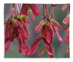 Red Maple Keys With Raindrops Fleece Blanket