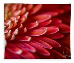 Red Petals Abstract 1 Fleece Blanket