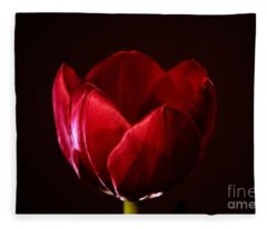 Red Tulip Fleece Blanket