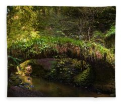 Reelig Bridge And Grotto Fleece Blanket