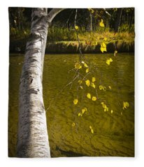 Salmon During The Fall Migration In The Little Manistee River In Michigan No. 0887 Fleece Blanket
