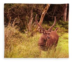 Sambar Deer II. Horton Plains National Park. Sri Lanka Fleece Blanket
