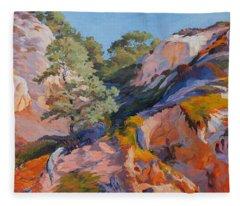 Sandstone Canyon At Torrey Pines Fleece Blanket
