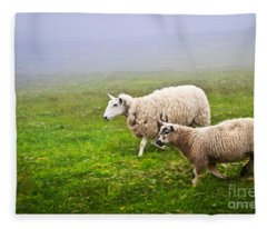 Sheep In Misty Meadow Fleece Blanket