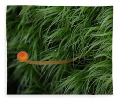 Small Orange Mushroom In Moss Fleece Blanket