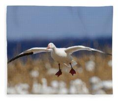 Snow Goose Landing Fleece Blanket