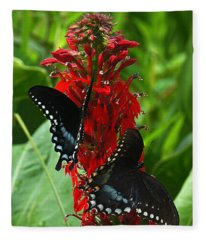 Spicebush Swallowtails Visiting Cardinal Lobelia Din041 Fleece Blanket