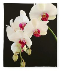 Spray Of White Orchids Fleece Blanket