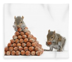 Squirrels And Nut Pyramid Fleece Blanket
