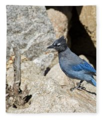 Stellers Jay Fleece Blanket
