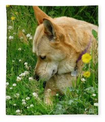 Stop And Smell The Clover Fleece Blanket