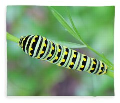 Swallowtail Caterpillar On Parsley Fleece Blanket