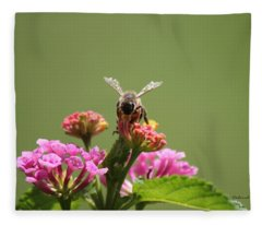 Sweet Nectar Fleece Blanket