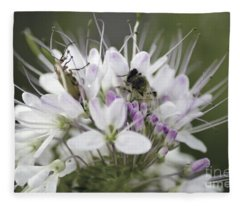 The Beetle And The Bee Fleece Blanket