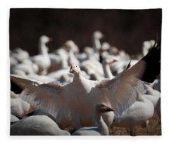 The Landing Fleece Blanket