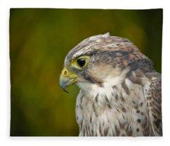 Thoughtful Kestrel Fleece Blanket