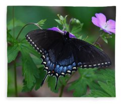 Tiger Swallowtail Female Dark Form On Wild Geranium Fleece Blanket