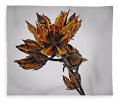 Winter Dormant Rose Of Sharon Fleece Blanket